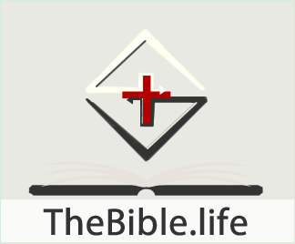 TheBible.life Bible Study Web Application